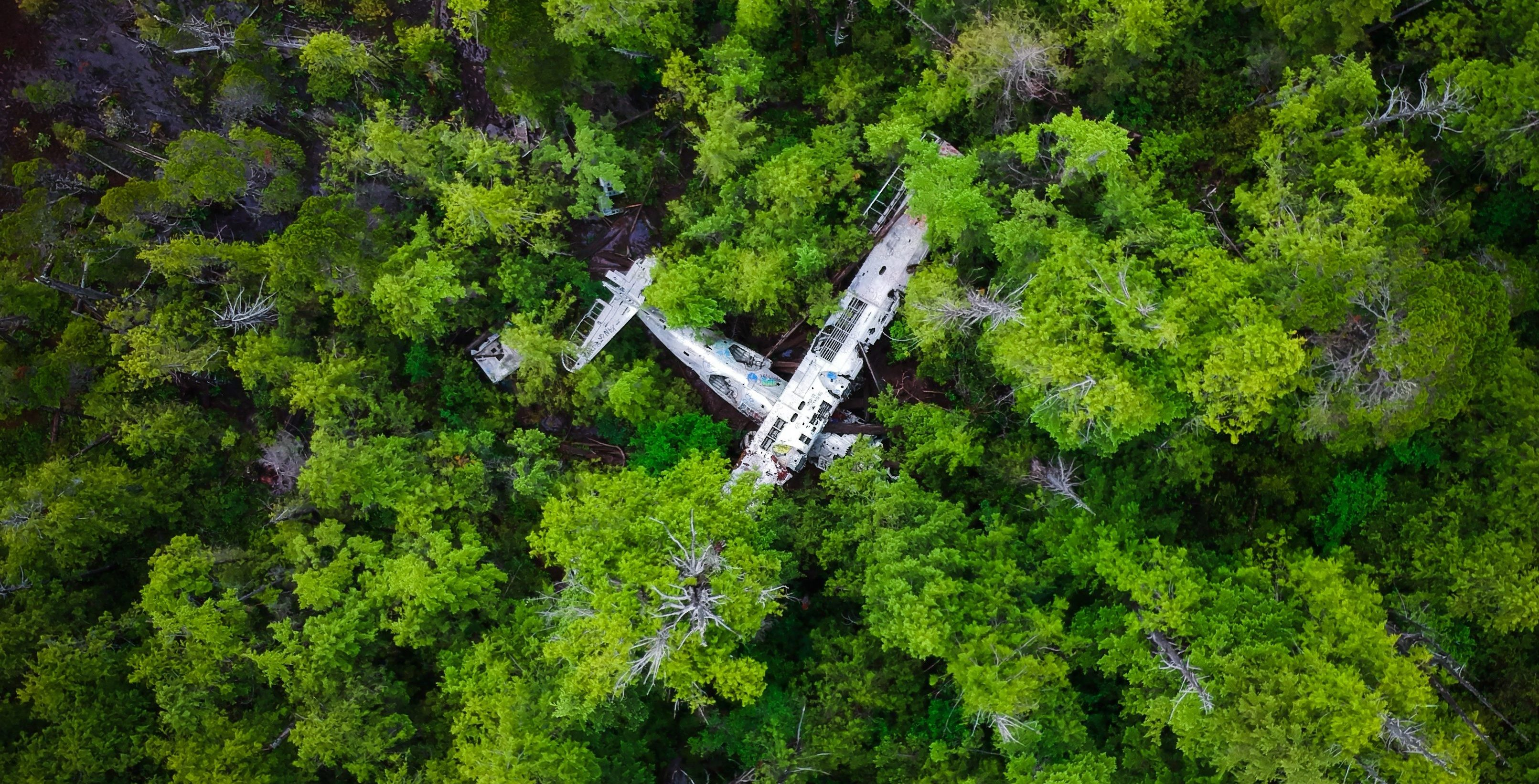 Flight 337 – Coming soon!