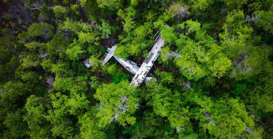 Flight 337